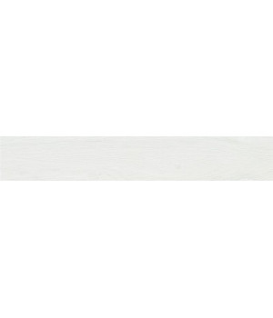 Nebraska Colours White