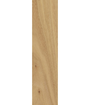 Element Wood Olmo